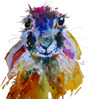 hare watercolour by Caroline Hulse
